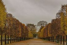 "Jardin des Tuileries / <meta name=""pinterest"" content=""nopin"" /> / by Beths97202"