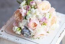 Fleurs thème corail
