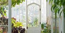 Interior Gardens
