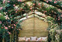 Rose Gradens