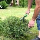 Plant Maintenace