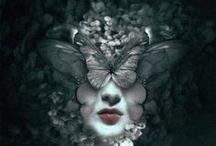 Wings & Things / by Tamre Davidson