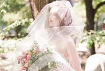 Veils that pre-vail / all things wedding veil