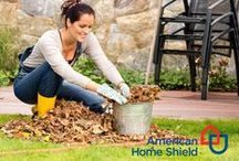 Fall Tips / Everything you need to prepare for the transition into Winter.