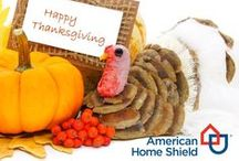 Thanksgiving / Everything you need for your favorite feasting holiday.