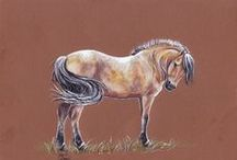 Art of horses