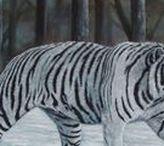 Wild cats/White tigers