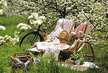 Vintage Picnics / Delightful inspiration for creating nostalgic picnics.