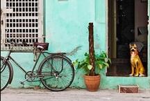 CUBA / by Cubavera