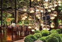 Atrium & Indoor garden dreams