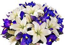 Hanukkah Bouquets / An assortment of bouquets available for Hanukkah, taking place Nov. 27 to Dec. 5