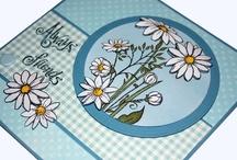 New Daisies Stamp / by Hobby Art