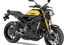 Yamaha Motorcycles / Yamaha Motorcycles / by Rider magazine