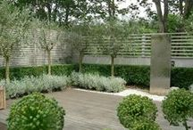 Small Backyards / Small backyards with a contemporary aesthetic / by DMM Studio