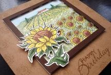 Sunflower Stamp Set / This is the new Sunflower clear set from Hobby Art.  Designed by Sharon Bennett.  Contains: 14 clear stamps  / by Hobby Art