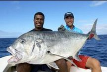 Fishing Vanuatu / Enjoy the ease of charted fishing or the quietness of fishing on your own private beach!
