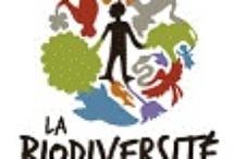 Précieuse et indispensable biodiversité - Animaux et végétaux / by Hypathie Blogueuse