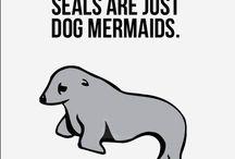 I Believe In Mermaids