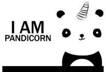 Pandas / Omg Pandas!