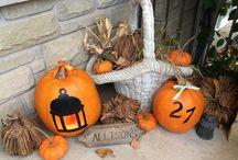 My Seasonal Garden / Pictures from my own garden - Burlington Ontario Canada