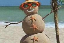 Winter in South Florida / All things winter in South Florida.