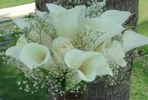 Wedding Bouquets, Cakes & Decor / by Angie Rand