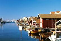 Scandinavian Inspiration / This is where we are from