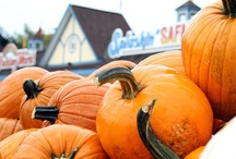 Happy Halloween Weekends / New this season: Weekends in October.