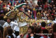 Fiestas / Fiestas patronales, populares, gastronómicas, religiosas,  festivales, música, color, espectáculo… Esta Región no descansa