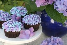 fancy  cake/cupcakes