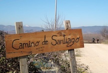 Walking & Cultural Tours  / A collection of snapshots from our cultural & walking holidays
