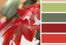 Nature's Color Combinations / Nature inspired color stories.