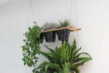 Inside garden / Home Decor