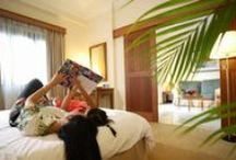 Our Suite Rooms