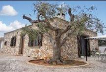 Trullo Gallipoli / Vivere un'esperienza di viaggio in un caratteristico trullo salentino a Gallipoli.