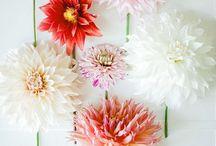 Fleur * / 綺麗な草花
