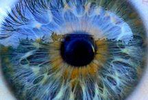Amassing  eyes