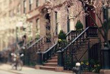 New York New York / by Helen Hughes
