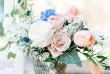 Wedding / by Becky Cahlik