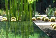 jardins/gardens
