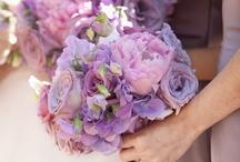 Wedding Inspiration / weddings / by Francesca Rosebush