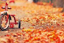 Seasons :: Autumn