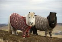 (B.Q) knitting & crochet / knitting & crochet ideas