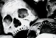Skulls and bones / by Geri G