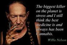 Hennep Cannabis Medicinaal..