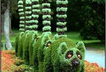 Yard Ideas and Crafts