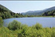 Escapade à Masevaux et dans la vallée de la Doller / Vous avez  besoin d'un bon bol d'air frais ? Direction la vallée de la Doller qui nous conduit jusqu'au Ballon d'Alsace en passant par Masevaux, le lac de Sewen, le barrage d'Alfeld, au cœur d'une nature verdoyante.
