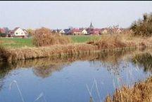 Balade à vélo le long du canal entre Colmar et Artzenheim / Envie d'une balade à vélo ? Dans un décor bucolique on a suivi la voie verte n°12, le long du canal de Colmar pour une étape de 30 km aller-retour entre la cité de Bartholdi et Artzenheim. On vous rassure, ce n'est que du plat et c'est vraiment sympa !