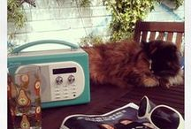 Pure Radio Fan Pics / We love seeing your radios in your home! Post your radios on our Facebook page https://www.facebook.com/PURE or tag us in your Instagram posts #PureRadio and we'll pin them on this board