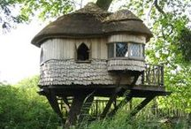 Tree houses / Among leaves and branches of a sturdy tree, let me build a place to be.